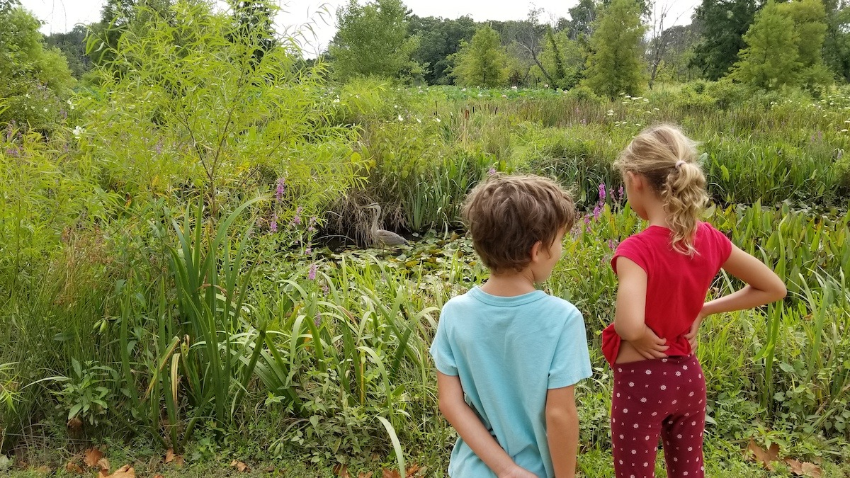 Cole and Keely admire the long-time resident Blue Heron.