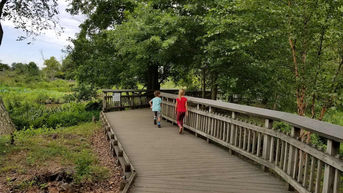 Cole and Keely run on a boardwalk in the gardens.