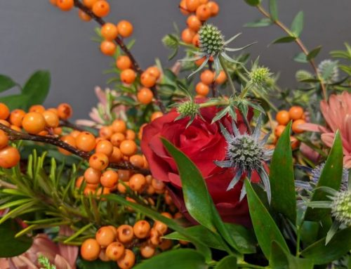 DIY Thanksgiving Flower Design Classes and More