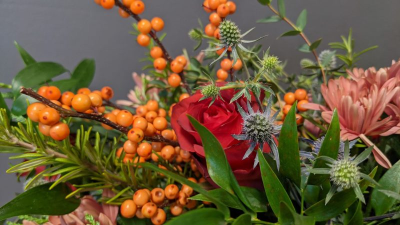 Ilex Berries and Roses