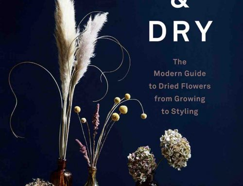 Flower Book Recommendations: Cut & Dry and Urban Flowers