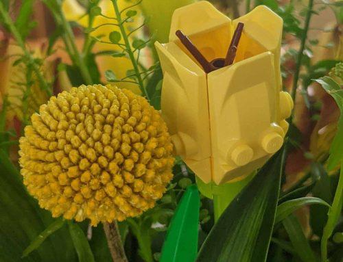 LEGO Flowers Kid-Friendly Fun