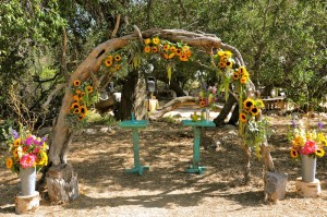 flowerduet-ranch-sunflower-arch-full