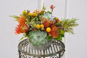 flowerduet-succulent-centerpiece